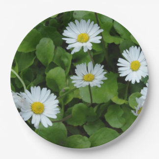 Floral Daisy Custom Paper Plates 9 in