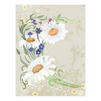 Floral daisy illustration on grunge background postcard