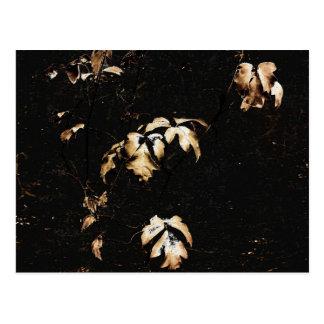 Floral Deco Grunge Postcard
