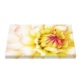 Floral Delight . Canvas Print