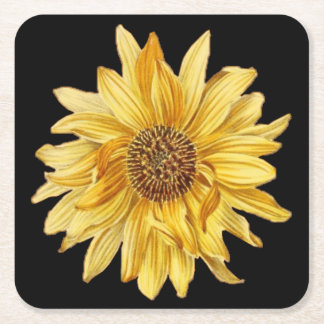 Floral design, sunflowers, black background square paper coaster
