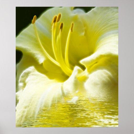 Floral Digital Art Poster