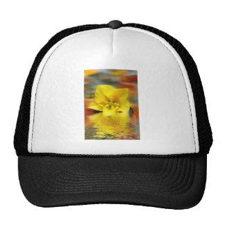Floral digital art reflections hats