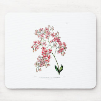Floral Gardens Mouse Pad