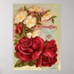 Floral Gem 1897 Roses Vintage Flower Advertisement Poster