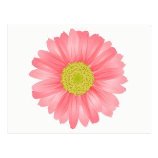 Floral Gerbera Daisy Pink & Yellow Flower Postcard