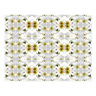 Floral Graphic Pattern Design. Postcard