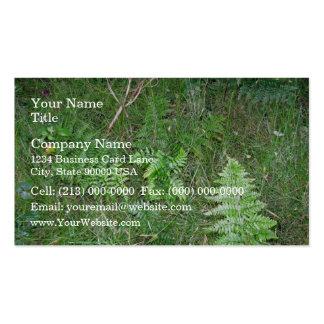 Floral green fern in grass business card template
