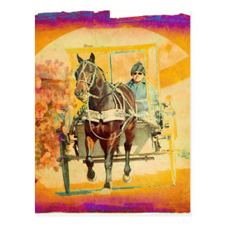 Floral Grunge Amish Horse and Buggy Postcard