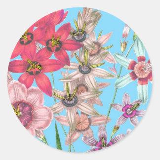Floral Illustration Drawing Vintage Printed Art Round Sticker