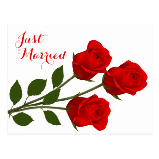Floral Just Married Red Rose Wedding Announcement Postcard