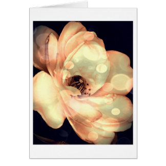 Floral Note Card, White Rose in Rich Sepia Note Card