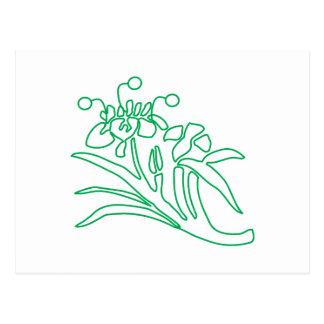 Floral Outline Postcard