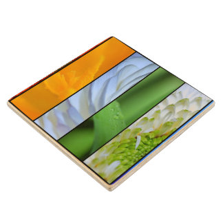Floral Panels in Rainbow Colors Maple Wood Coaster