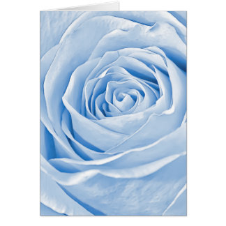 Floral Photo Dainty Light Blue Rose Greeting Cards