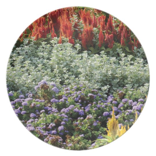 Floral Photo Decorative Plate