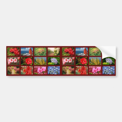 Floral photography bumper sticker