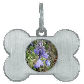 Floral photography pet name tag