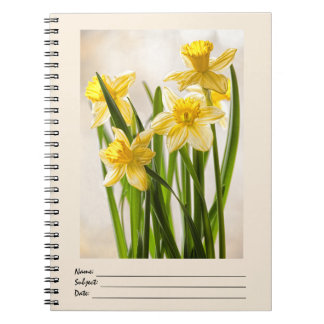 Floral Photography:  Yellow Spring Daffodils Spiral Notebook