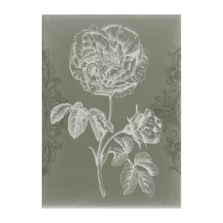 Floral Relief I Acrylic Print