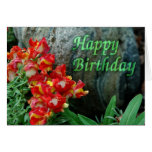 Floral Rock Birthday Greeting Card