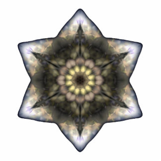 Floral Star of David Photo Sculptures