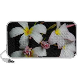 Floral, Tropical Hawaiian Plumeria Blooms iPhone Speaker