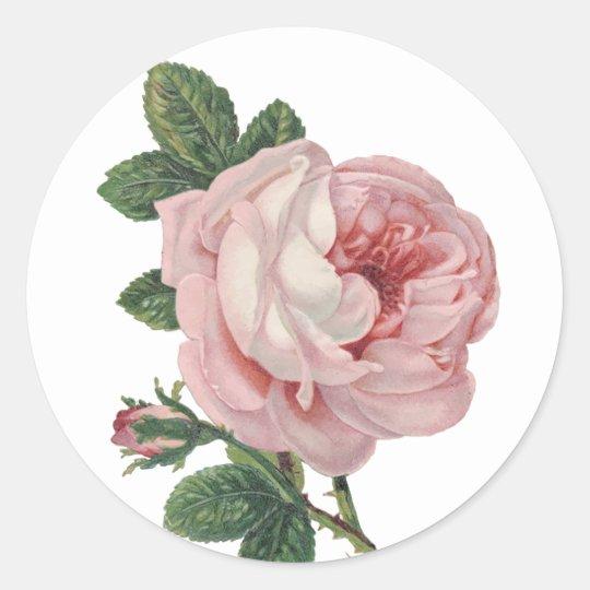 Floral Vintage Pink Rose Flower - Wedding Party