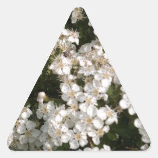Floral White Triangle Sticker