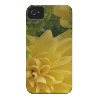 Floral yellow/green iPhone 4 covers