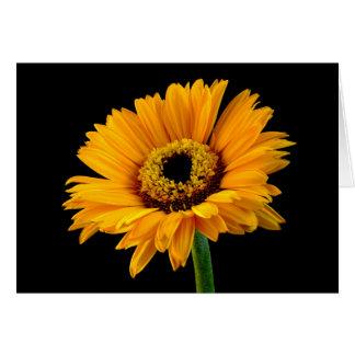 Floral Yellow Orange Flower Black Love Hello Card