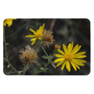 "Flores en mi hierbas ""Flowers in my Weeds"" Rectangle Magnets"