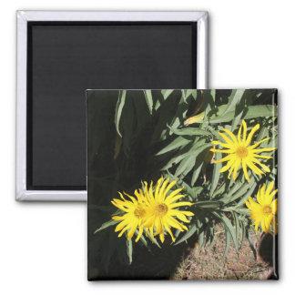 """Flores en mi hierbas """"Flowers in my Weeds"""" Fridge Magnet"""