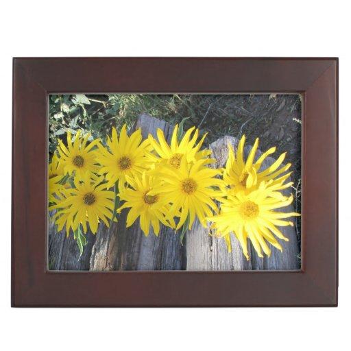 """Flores en mi hierbas """"Flowers in my Weeds"""" Memory Boxes"""