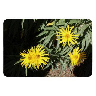 "Flores en mi hierbas ""Flowers in my Weeds"" Rectangular Photo Magnet"
