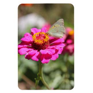 "Flores en mi hierbas "" flowers in my weeds "" rectangular photo magnet"