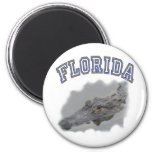 Florida alligator fridge magnets