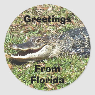 Florida Alligator Sticker Greetings From Florida