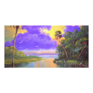 Florida Backwoods Colors Photo Cards