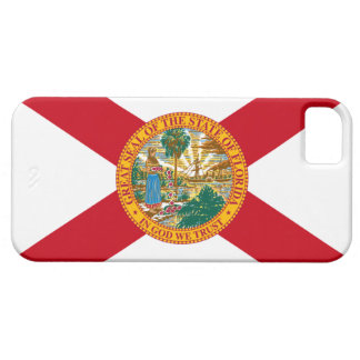 Florida Barely There iPhone 5 Case