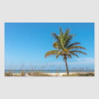 Florida beach palmtree sticker