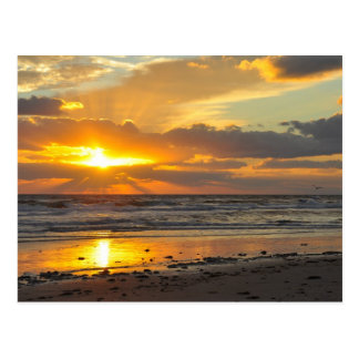 Florida Beach Scenic Sunrise Mug Postcard