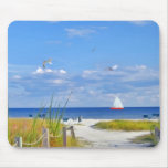 Florida Beach, Seaside, and Birds Mouse Pad