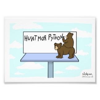 Florida Bear Hunt Photo Art