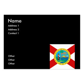 FLORIDA PACK OF CHUBBY BUSINESS CARDS