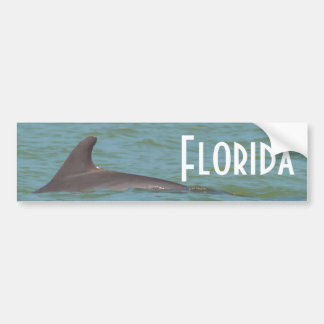 Florida Dolphin bumper sticker Car Bumper Sticker