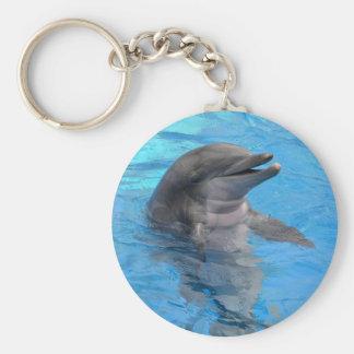 Florida Dolphin Key Ring