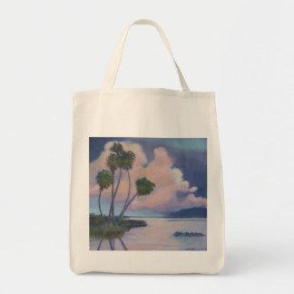 Florida Evening Sky Organic GroceryTote Bag