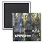 Florida Everglades Photo Souvenir Fridge Magnet