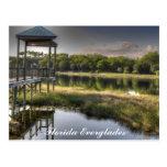 Florida Everglades Postcards